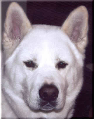 Kita, owned by Bob and Judy Pittelkow
