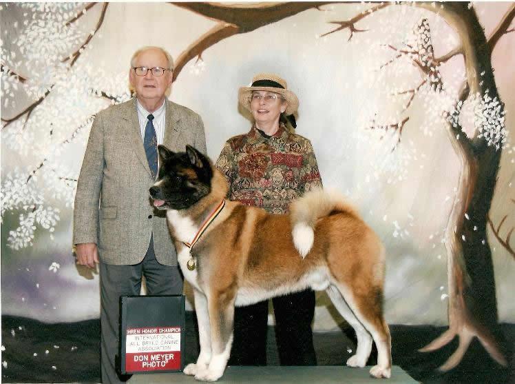 A Ch. Rumor x Ch. Savanna son.  Lived with Betty Ann in FL.